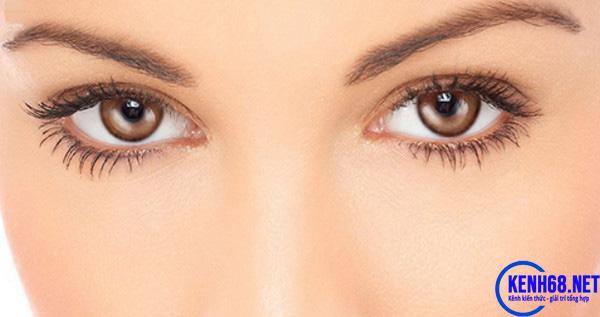 ăn ổi có tác dụng gì - tác dụng của ổi đối với mắt