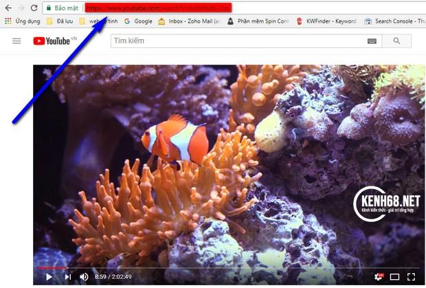 cách tải video trên youtube về máy tính 01