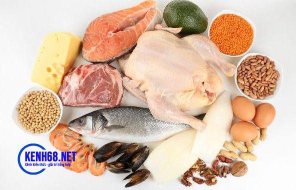 chế độ ăn cho người tập gym - bổ sung chất đạm