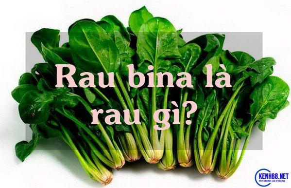 rau bina là rau gì - rau chân vịt là rau gì