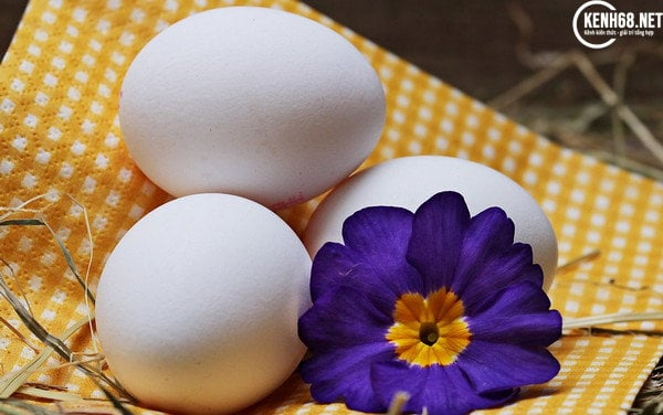 Cách làm trắng da mặt bằng trứng gà