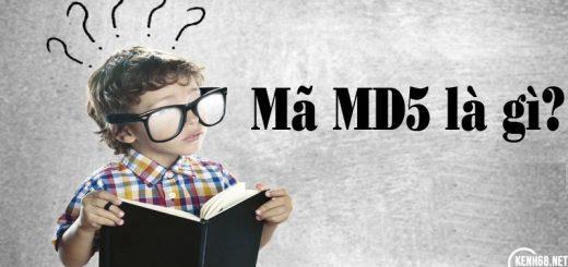 mã md5 là gì? mã sha1 là gì