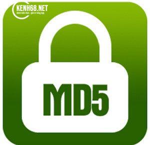 mã md5 là gì 01