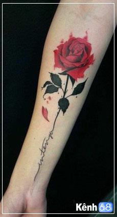 Hình xăm hoa hồng ở tay, bắp tay, bàn tay, cánh tay đẹp 006