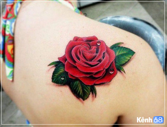 hình xăm hoa hồng ở vai 013