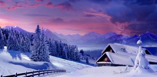 hình nền chủ đề mùa đông 05