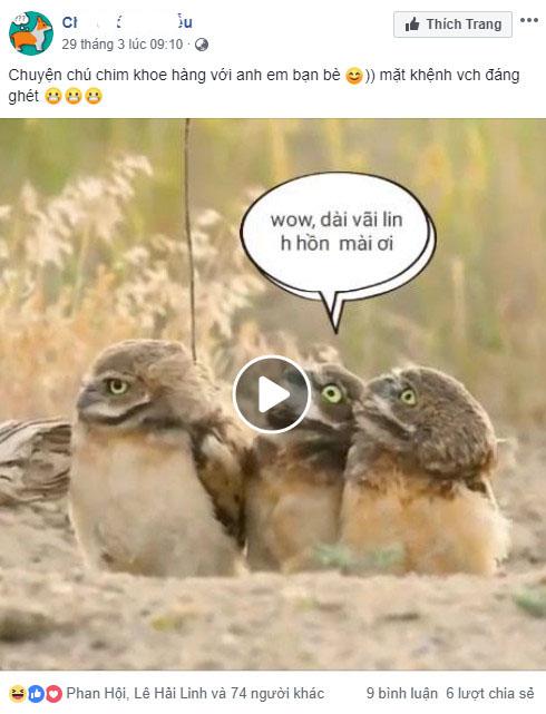 Một số ví dụ sử dụng Vch trên facebook là gì 03