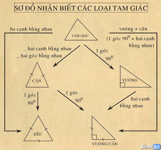phân biệt các loại tam giác thường gặp